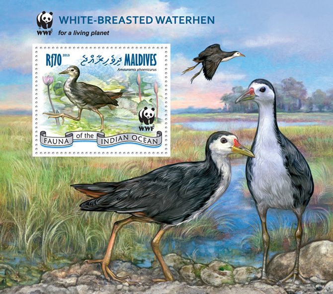 WWF - Birds. (souvenir sheet) - Issue of Maldives postage stamps