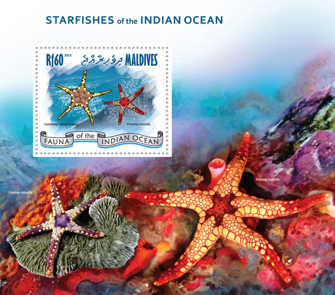 Starfishes - Issue of Maldives postage stamps