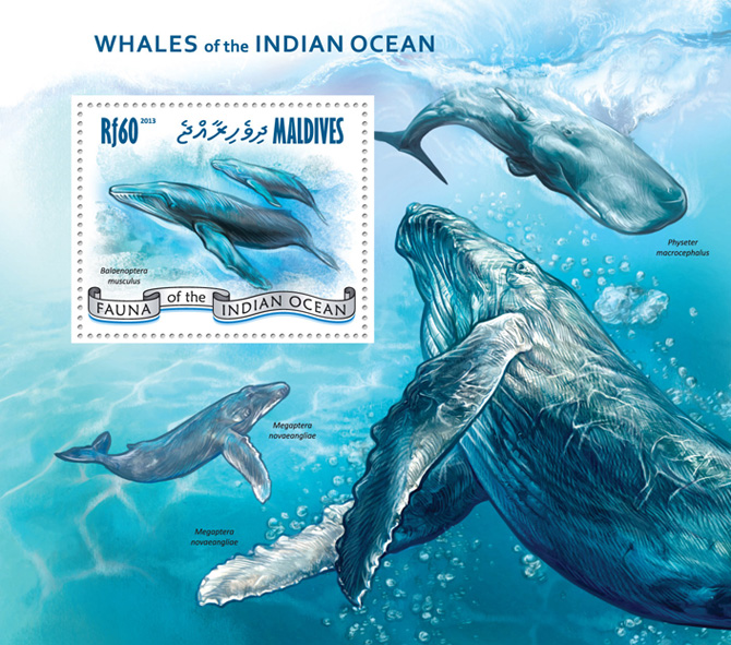 Whales - Issue of Maldives postage stamps