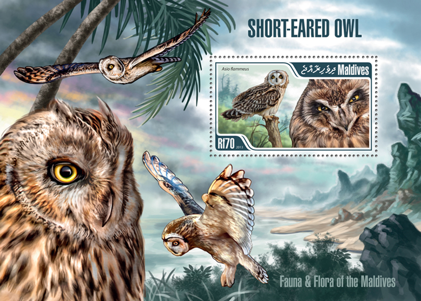 Owl - Issue of Maldives postage stamps