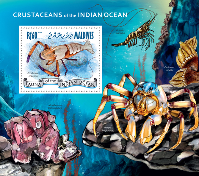 Crustaceans - Issue of Maldives postage stamps