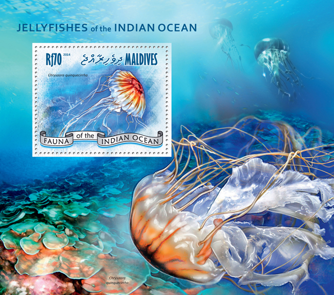 Jellyfishes - Issue of Maldives postage stamps