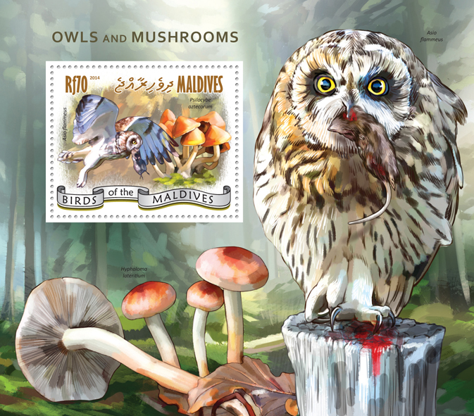 Owls and Mushrooms - Issue of Maldives postage stamps