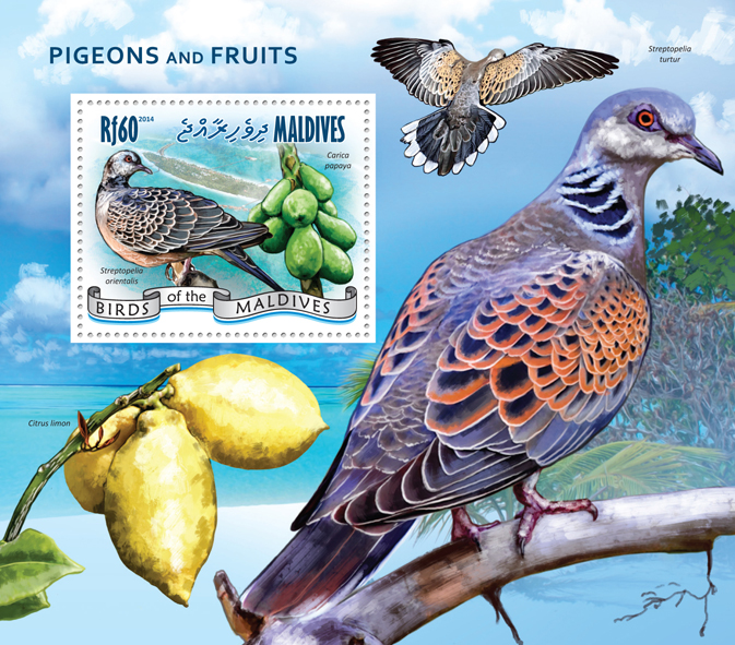 Pigeons and Fruits - Issue of Maldives postage stamps