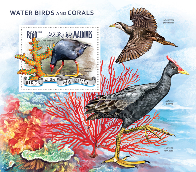 Water birds and Corals - Issue of Maldives postage stamps