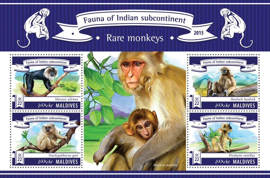 Rare Monkeys - Issue of Maldives postage stamps