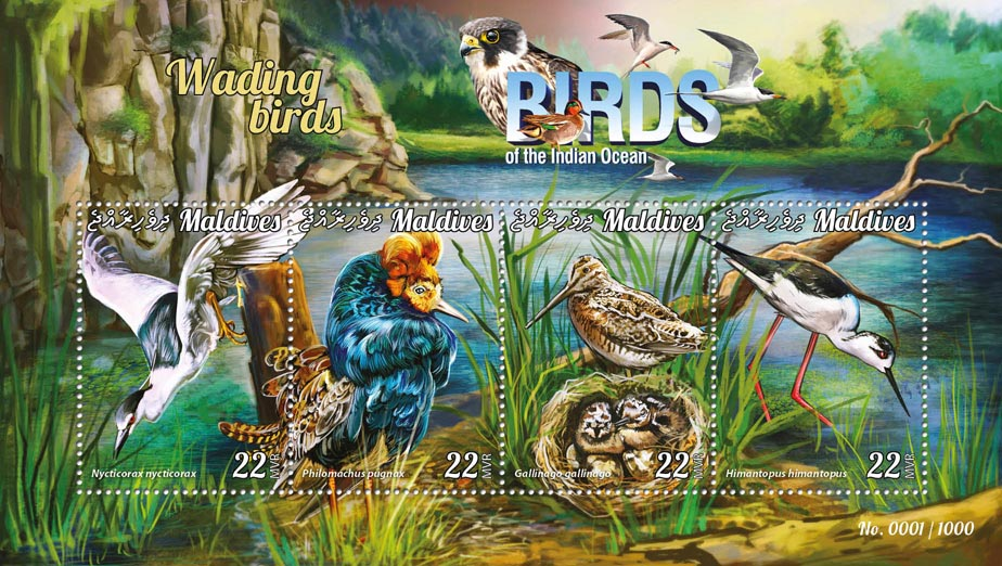Wading birds - Issue of Maldives postage stamps