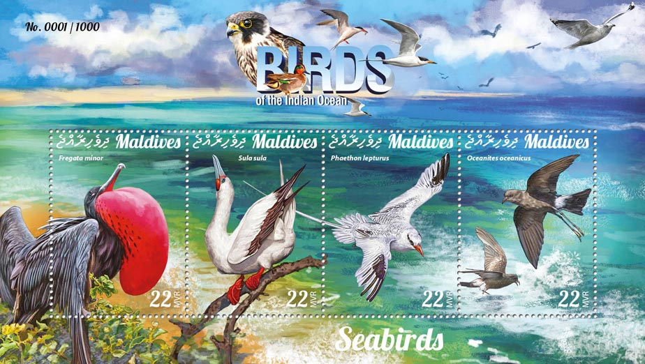 Seabirds - Issue of Maldives postage stamps