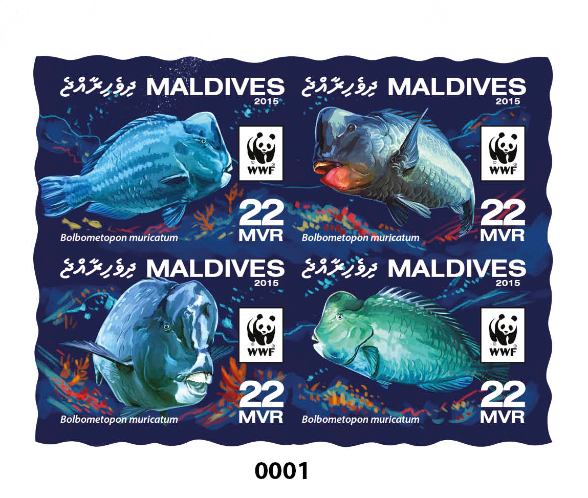 WWF – Parrotfish (delux) - Issue of Maldives postage stamps
