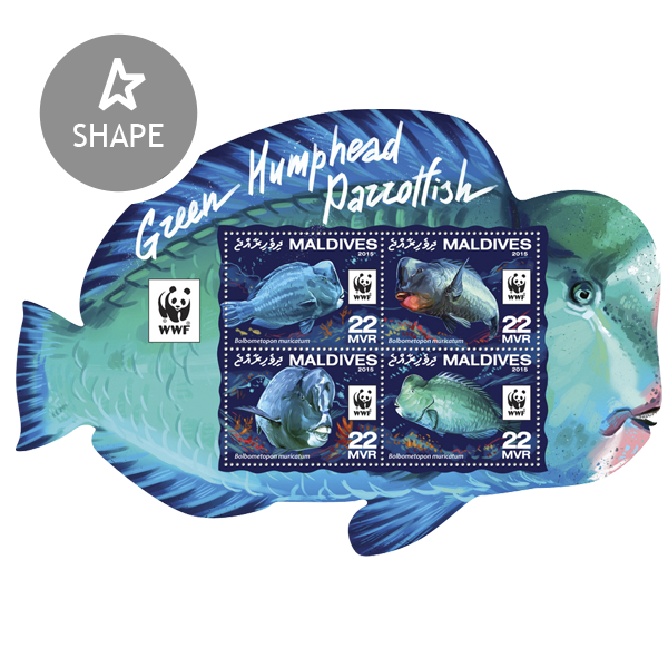 WWF – Parrotfish (set) - Issue of Maldives postage stamps