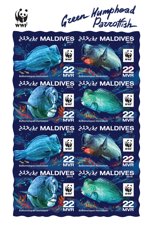 WWF – Parrotfish (imperf. 2 sets) - Issue of Maldives postage stamps