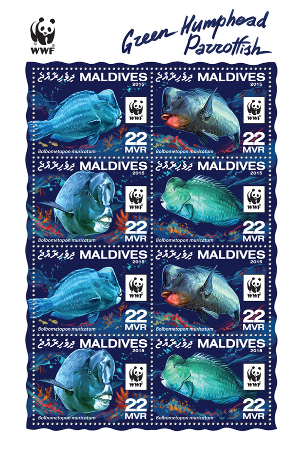 WWF – Parrotfish (2 sets) - Issue of Maldives postage stamps