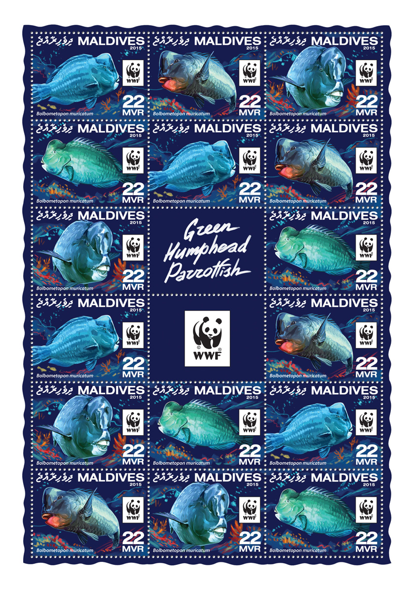WWF – Parrotfish (4 sets) - Issue of Maldives postage stamps
