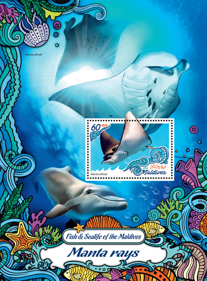 Manta rays - Issue of Maldives postage stamps