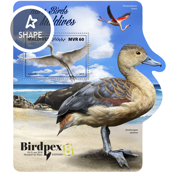 Rare birds - Issue of Maldives postage stamps
