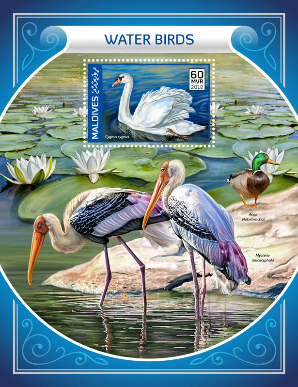 Water birds  - Issue of Maldives postage stamps