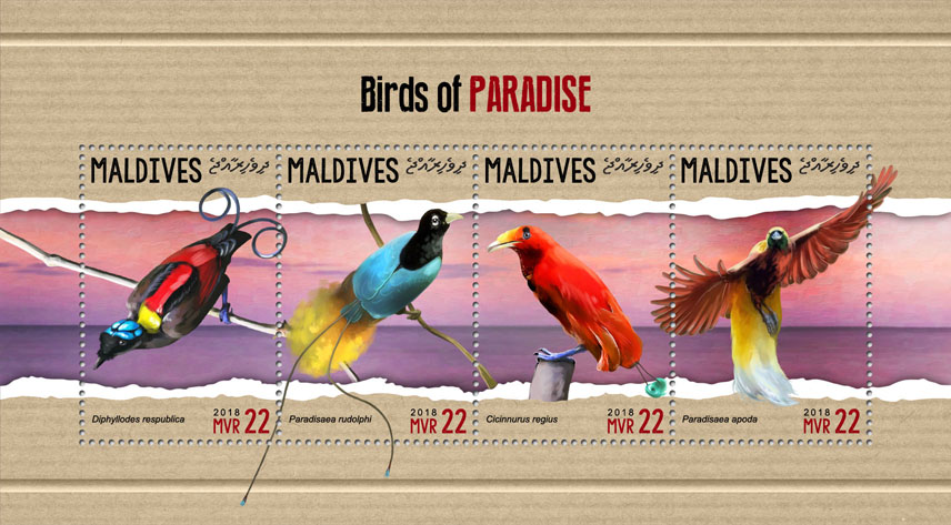 Bird of paradise - Issue of Maldives postage stamps