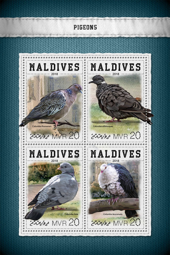 Pigeons - Issue of Maldives postage stamps