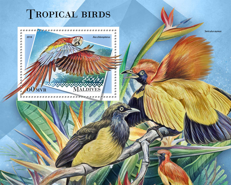 Tropical birds - Issue of Maldives postage stamps
