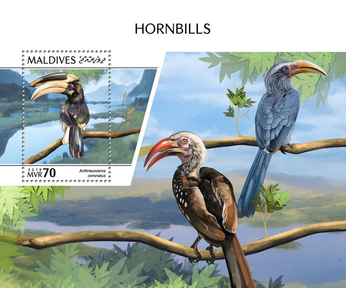 Hornbills - Issue of Maldives postage stamps
