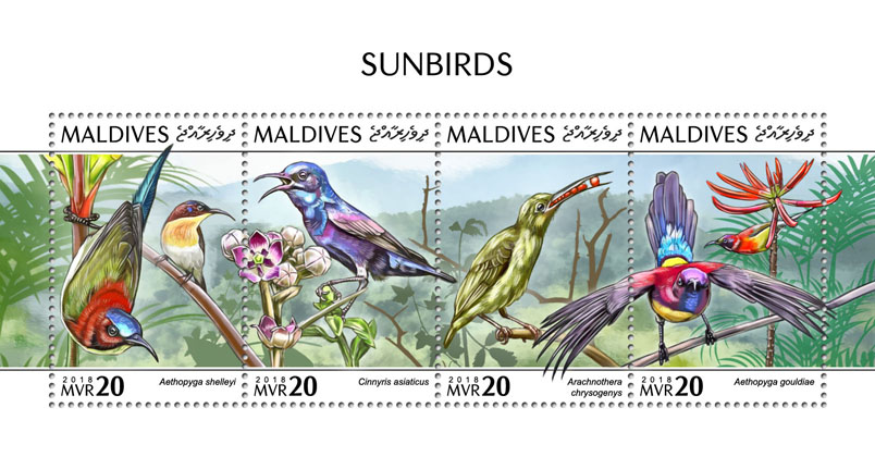 Sunbirds - Issue of Maldives postage stamps