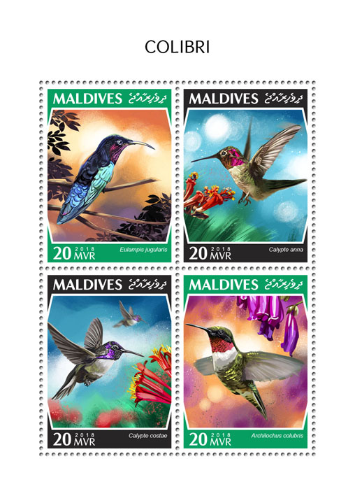 Colibri - Issue of Maldives postage stamps