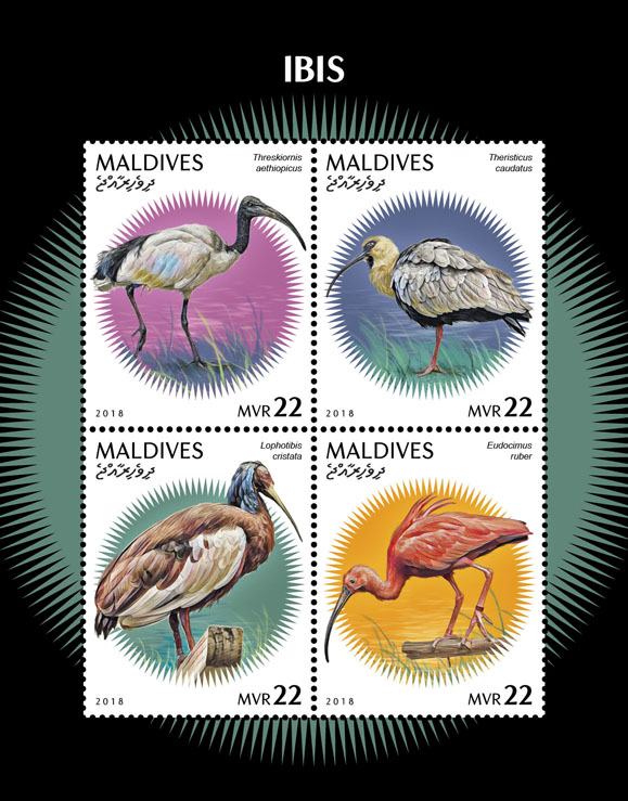 Ibis - Issue of Maldives postage stamps