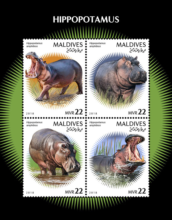 Hippopotamus - Issue of Maldives postage stamps