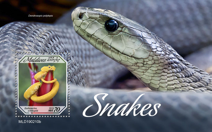 Snakes - Issue of Maldives postage stamps