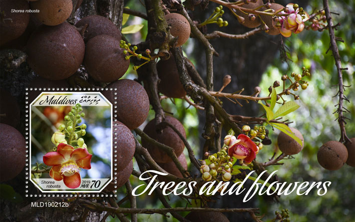 Trees and flowers - Issue of Maldives postage stamps
