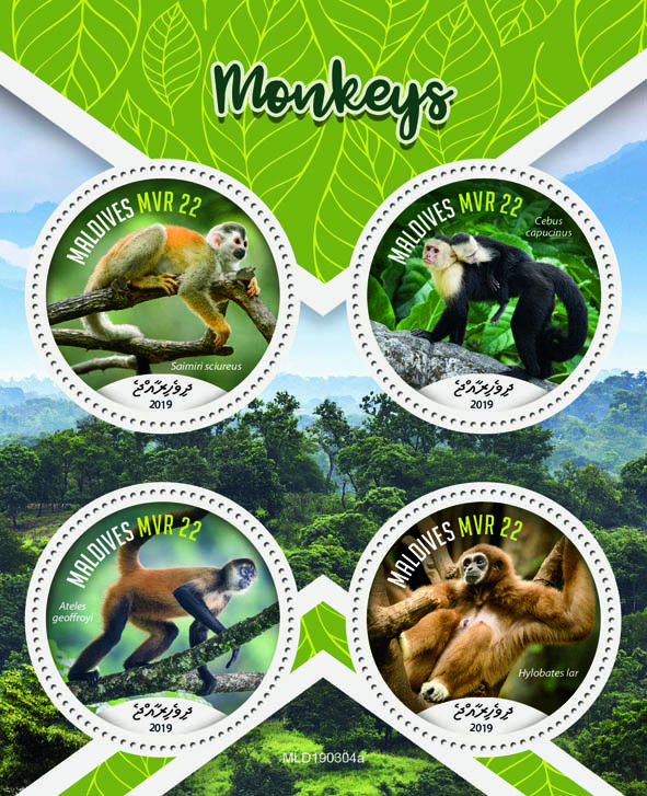 Monkeys - Issue of Maldives postage stamps