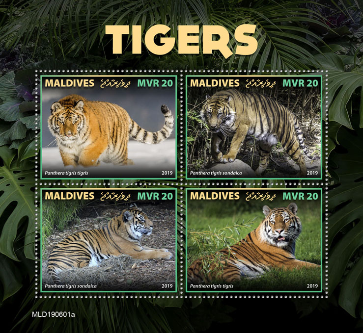 Tigers - Issue of Maldives postage stamps