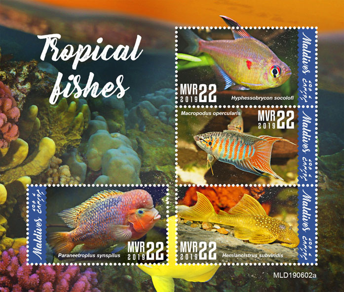 Tropical fishes - Issue of Maldives postage stamps