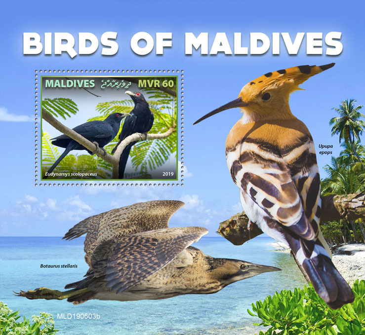 Birds of Maldives - Issue of Maldives postage stamps