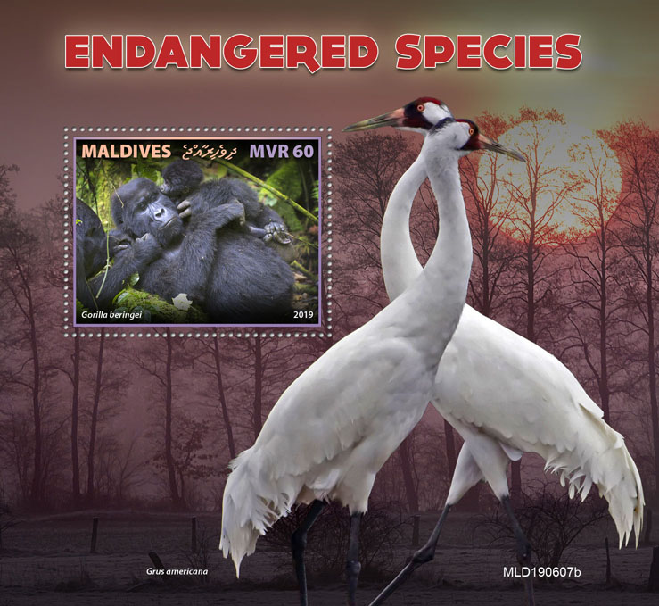 Endangered species - Issue of Maldives postage stamps