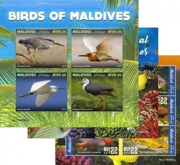 maldives-29-08-2019-code-mld190601a-mld190615b.jpg